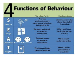 Functions of Behaviour